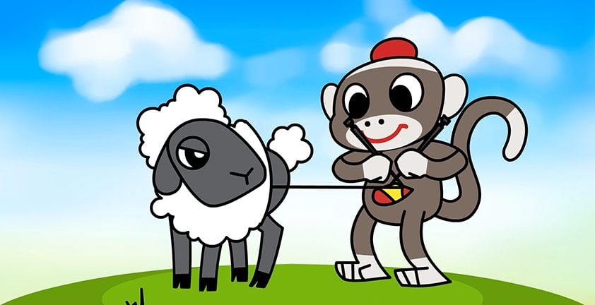 Knitting Sheep | 2D Animation | Client Sock City